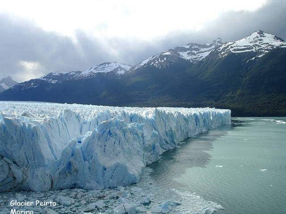 Glacier Peirto Morino