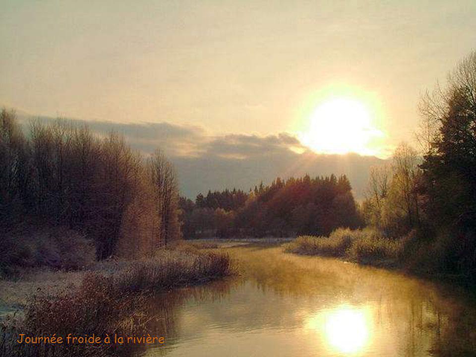 Journée froide à la rivière