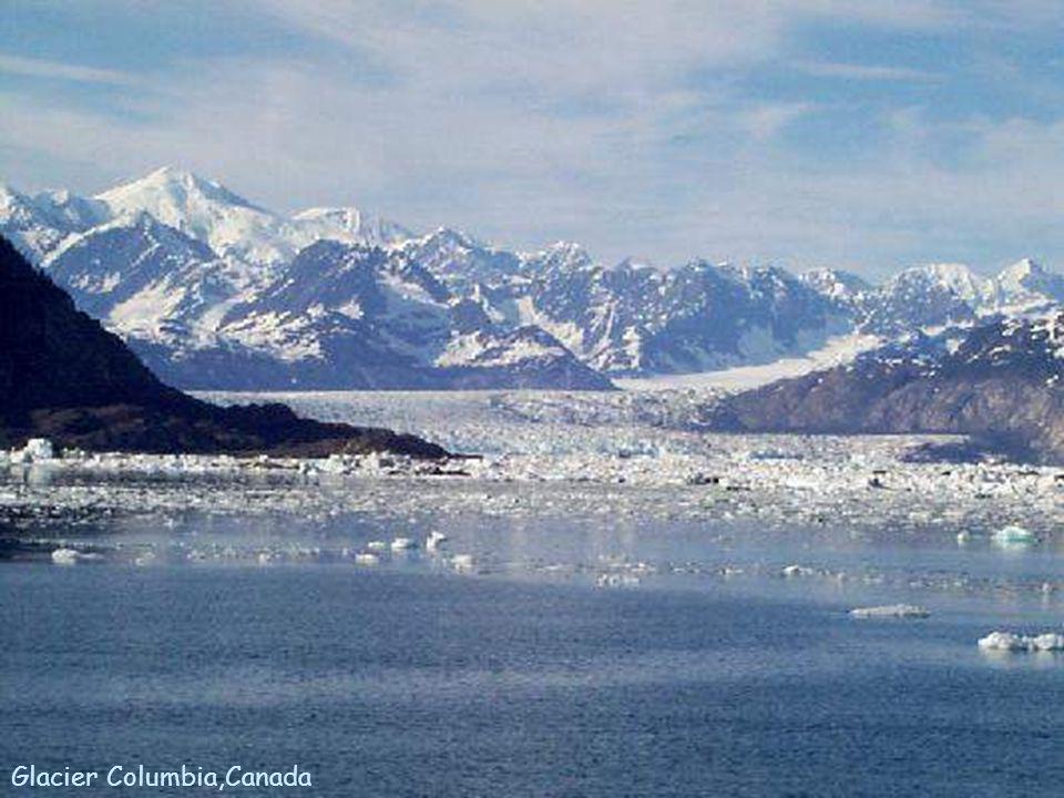 Glacier Columbia,Canada