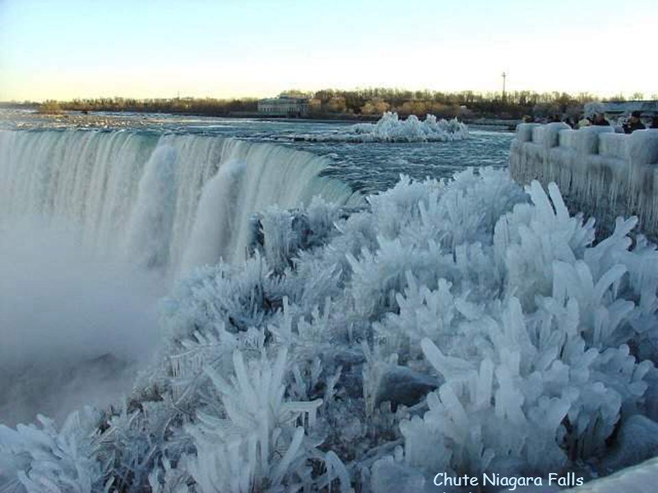 Chute Niagara Falls glacée