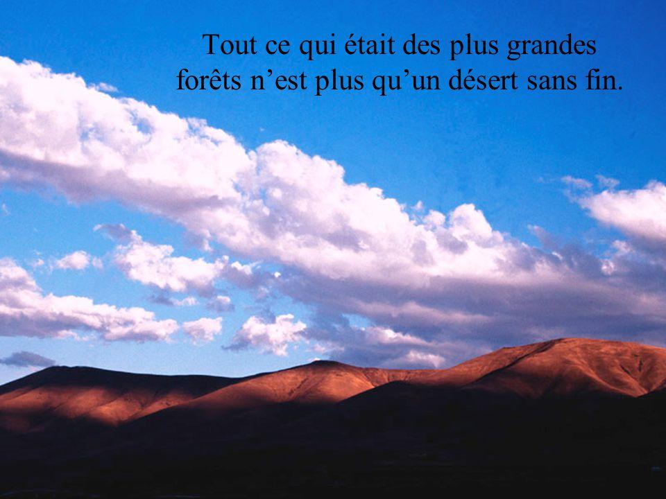 Tout ce qui était des plus grandes forêts n'est plus qu'un désert sans fin.