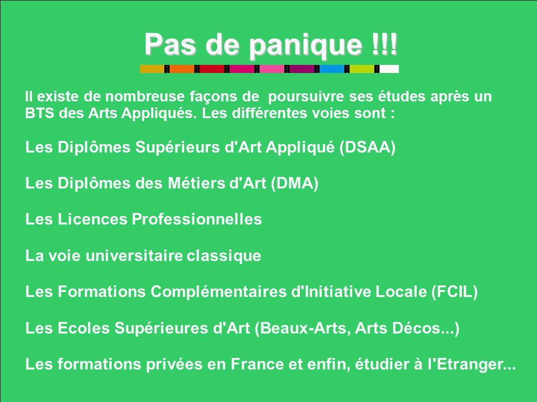 Pas de panique !!! Les Diplômes Supérieurs d Art Appliqué (DSAA)