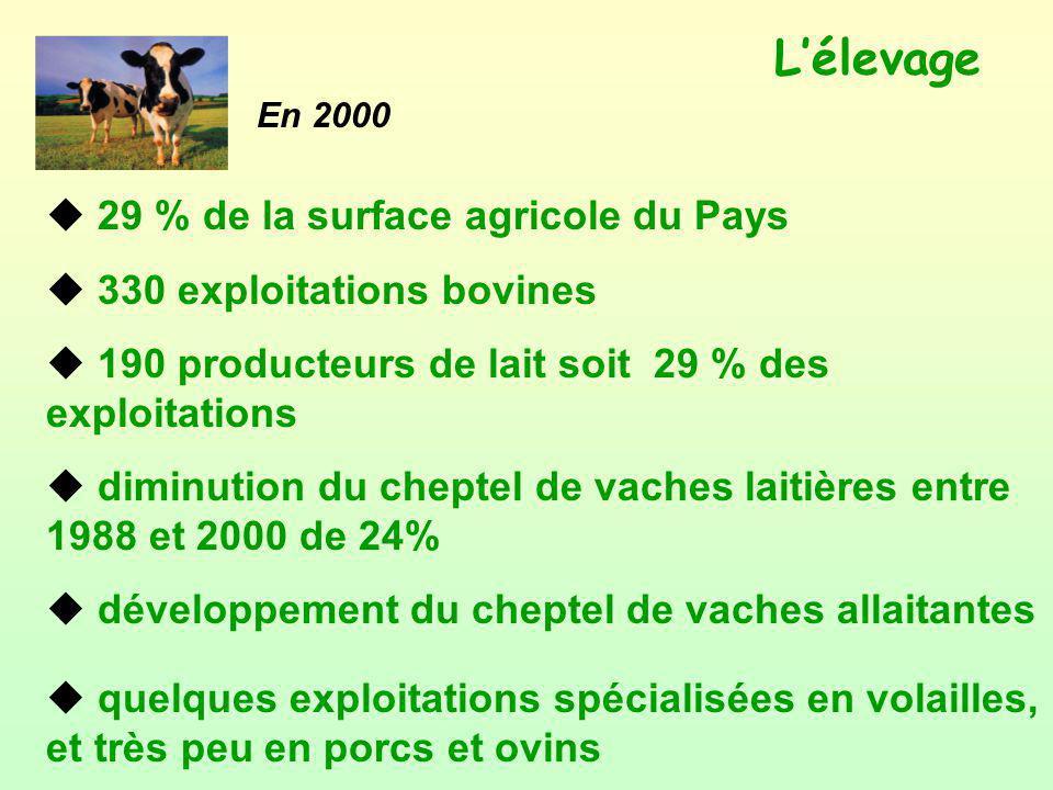 L'élevage 29 % de la surface agricole du Pays