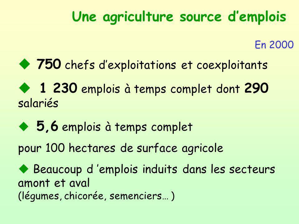 Une agriculture source d'emplois