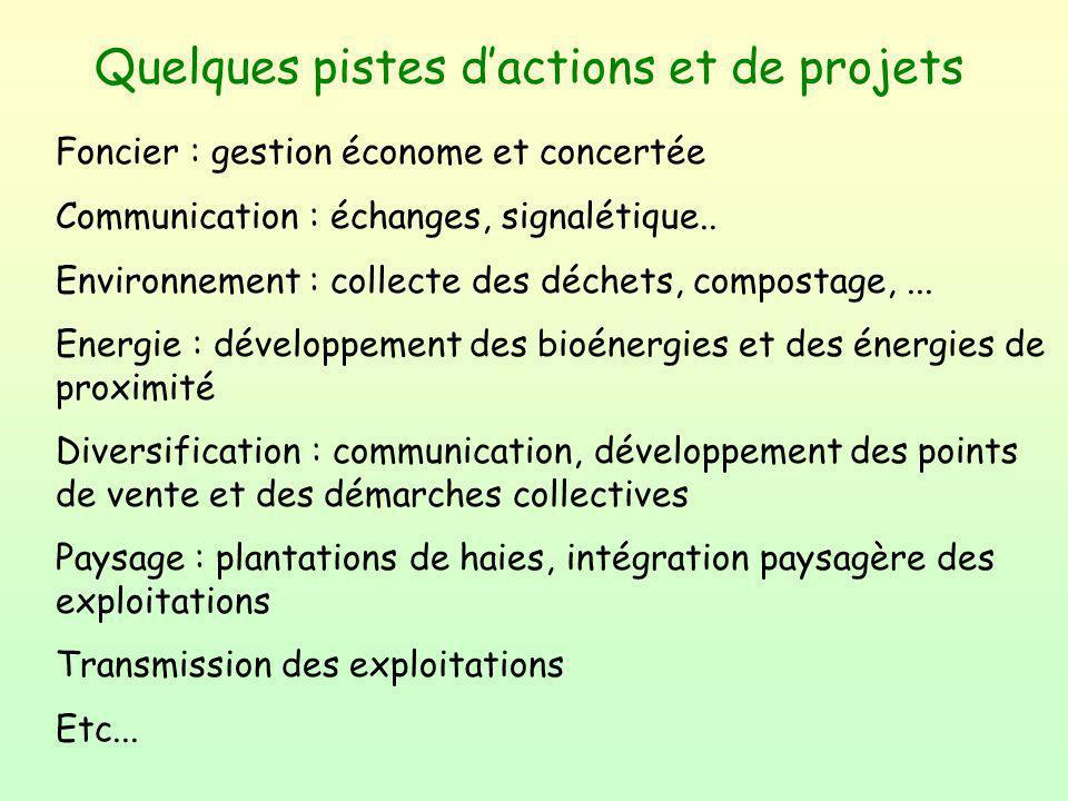 Quelques pistes d'actions et de projets