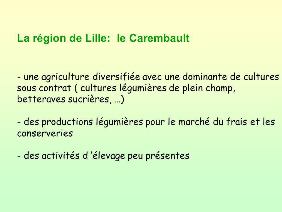 La région de Lille: le Carembault