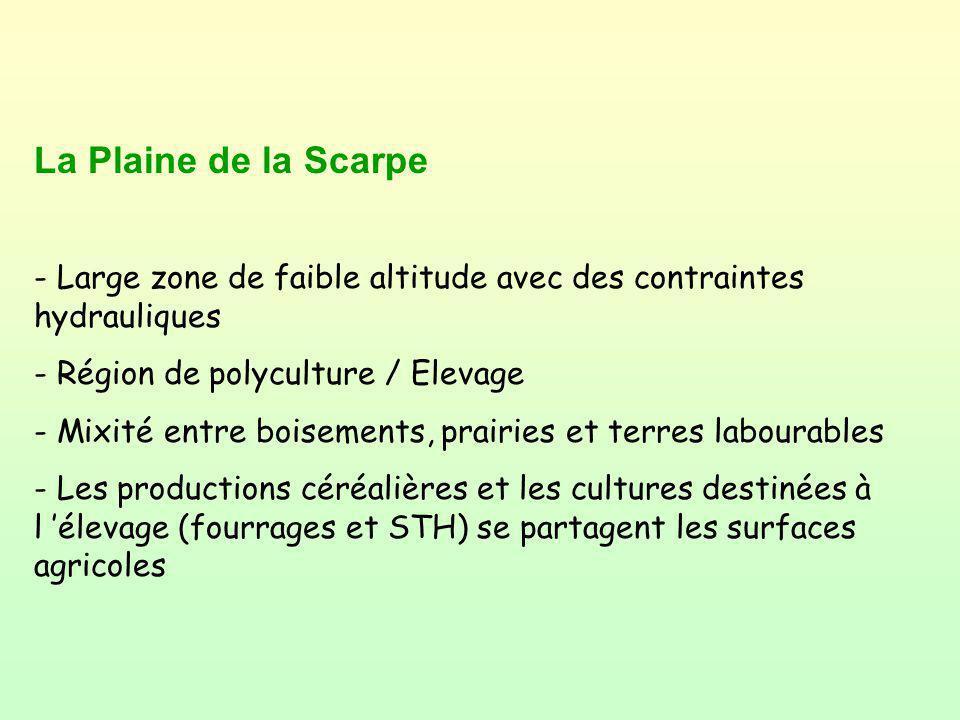 La Plaine de la Scarpe - Large zone de faible altitude avec des contraintes hydrauliques. - Région de polyculture / Elevage.