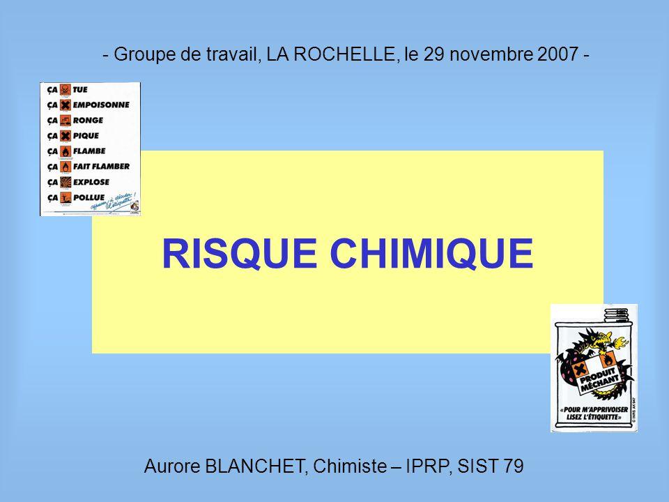 - Groupe de travail, LA ROCHELLE, le 29 novembre 2007 -