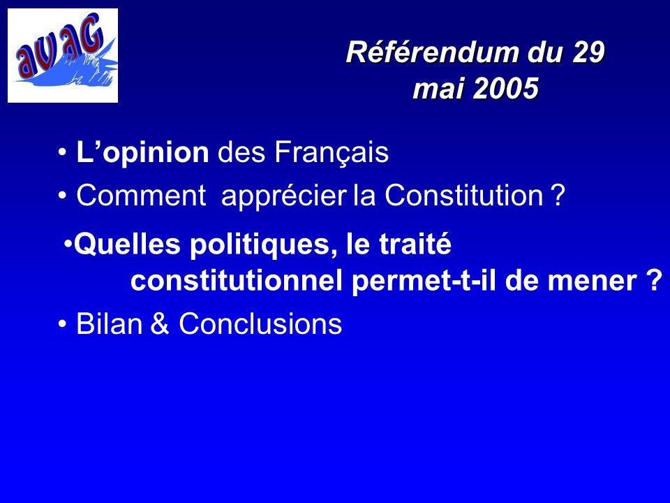 Référendum du 29 mai 2005 L'opinion des Français. Comment apprécier la Constitution Bilan & Conclusions.