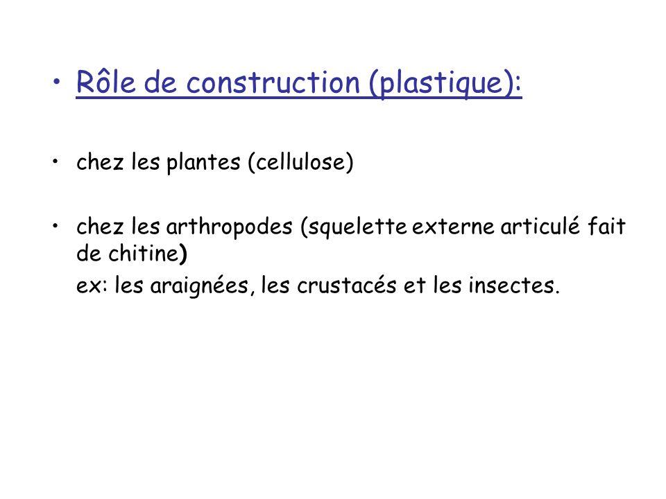 Rôle de construction (plastique):