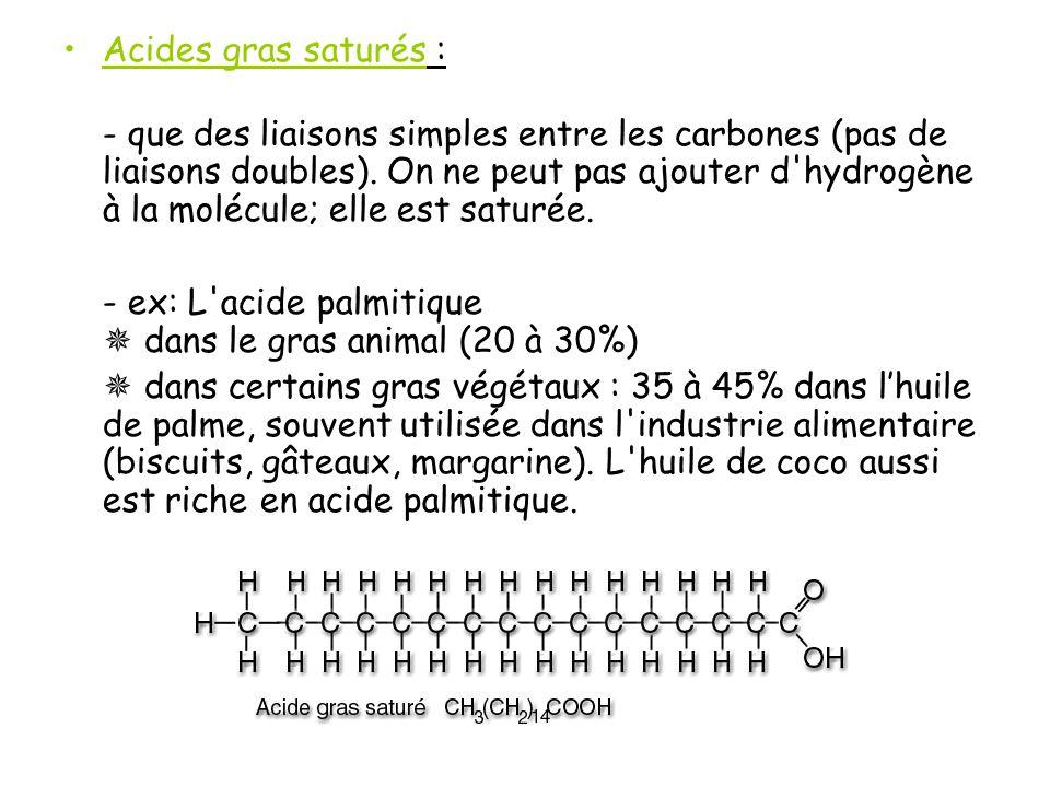 Acides gras saturés :