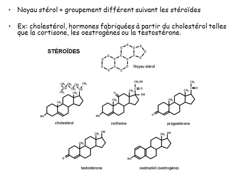 Noyau stérol + groupement différent suivant les stéroïdes