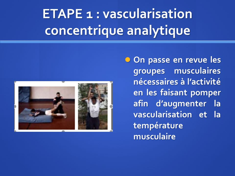 ETAPE 1 : vascularisation concentrique analytique