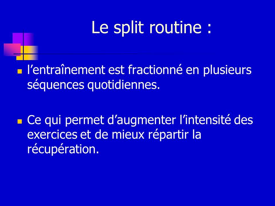 Le split routine : l'entraînement est fractionné en plusieurs séquences quotidiennes.
