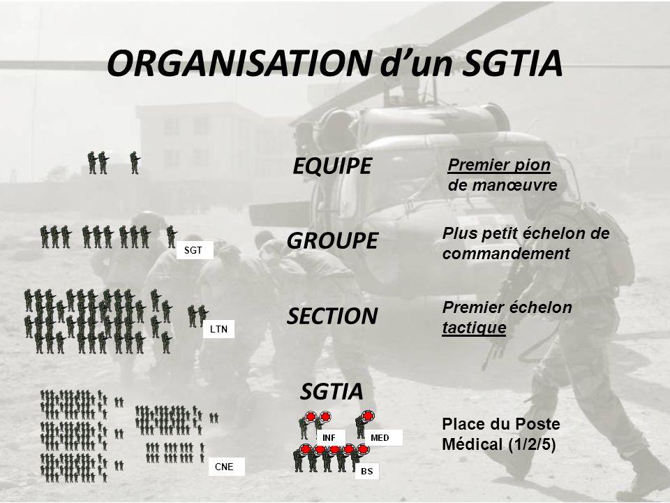 ORGANISATION d'un SGTIA