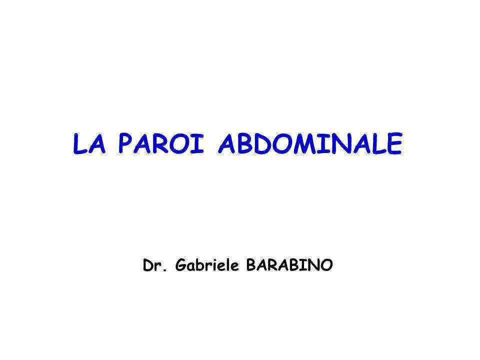 LA PAROI ABDOMINALE Dr. Gabriele BARABINO La paroi abdominal: