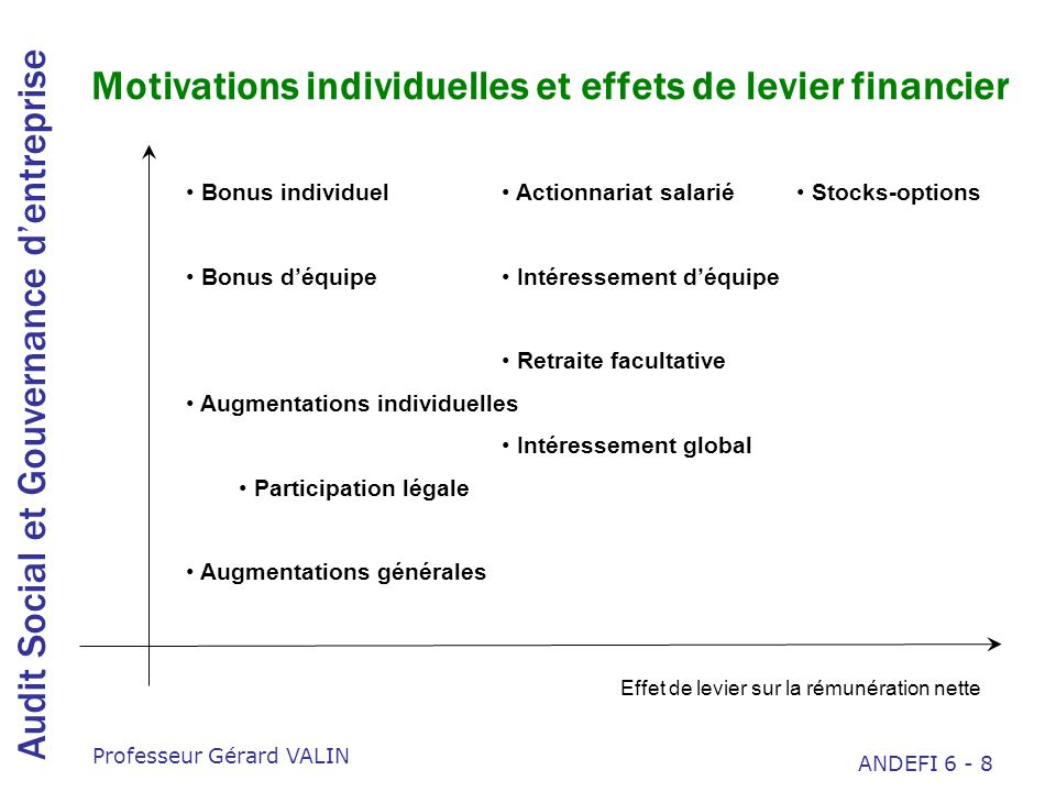 Motivations individuelles et effets de levier financier