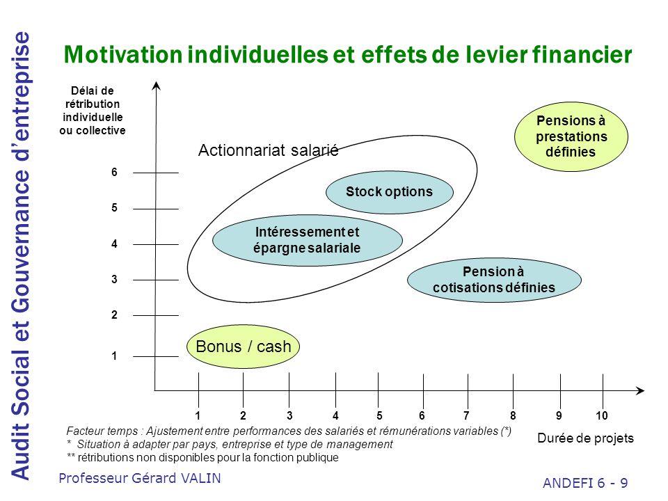 Motivation individuelles et effets de levier financier