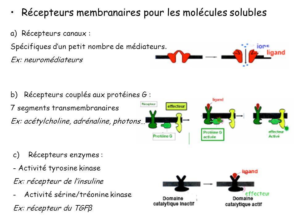 Récepteurs membranaires pour les molécules solubles