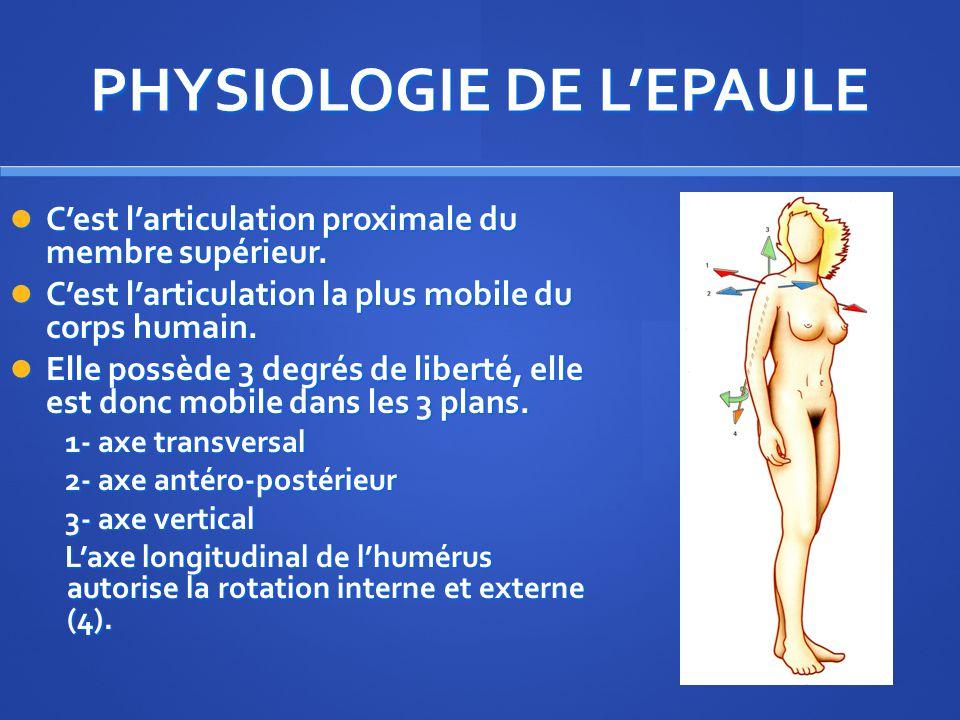 PHYSIOLOGIE DE L'EPAULE