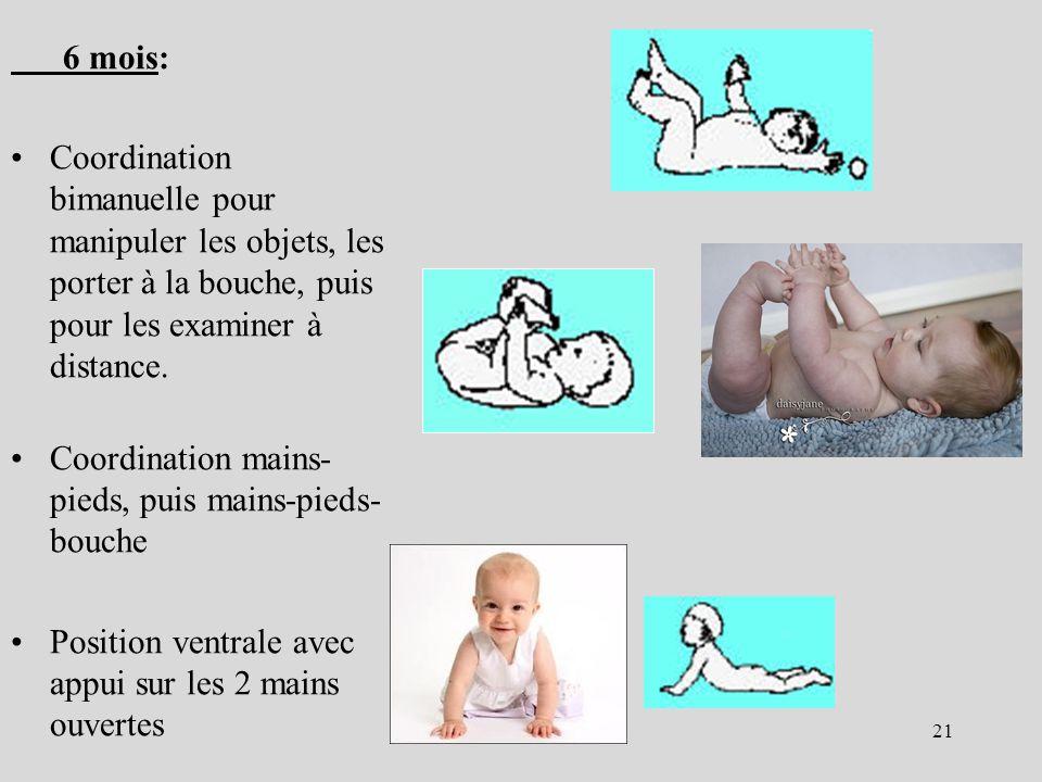 6 mois: Coordination bimanuelle pour manipuler les objets, les porter à la bouche, puis pour les examiner à distance.
