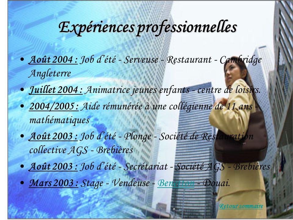 Expériences professionnelles