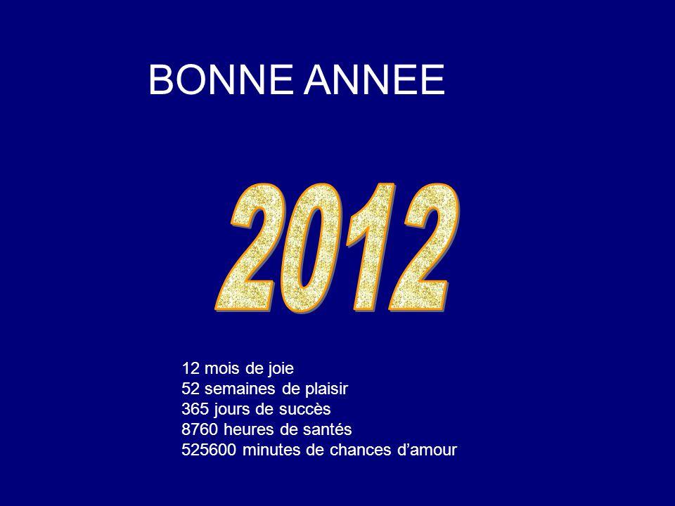 2012 BONNE ANNEE 12 mois de joie 52 semaines de plaisir