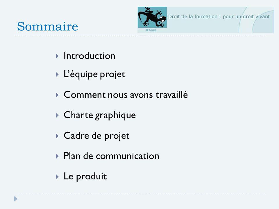 Sommaire Introduction L'équipe projet Comment nous avons travaillé