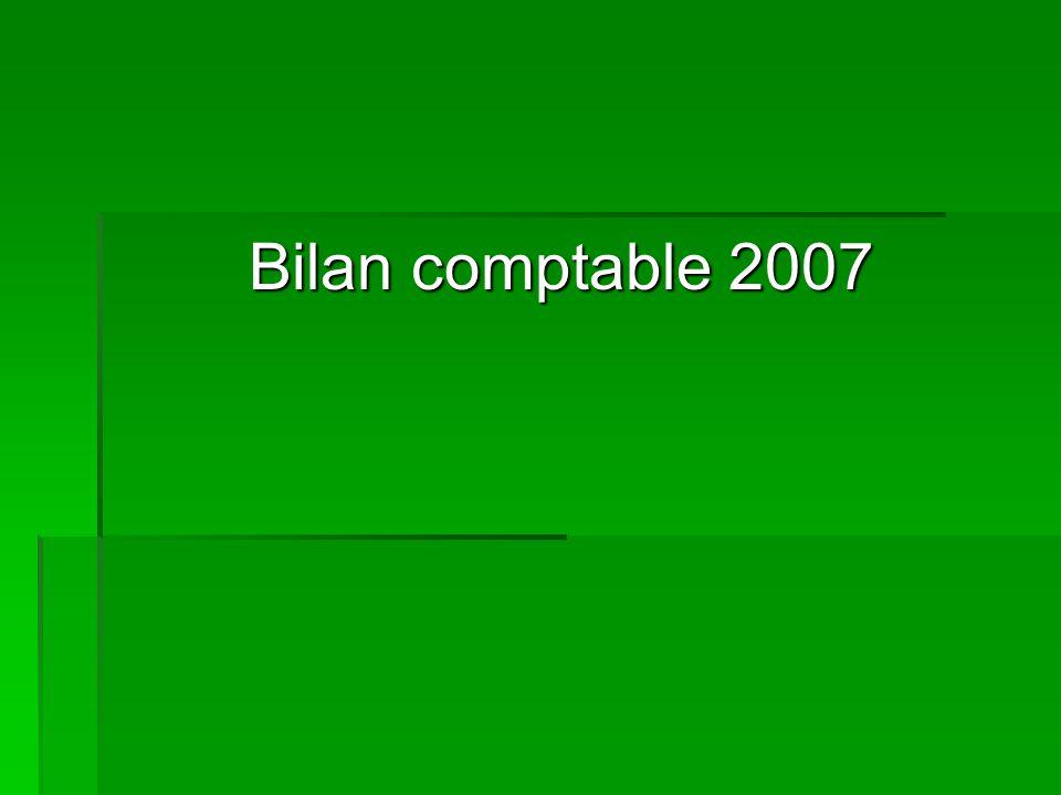 Bilan comptable 2007