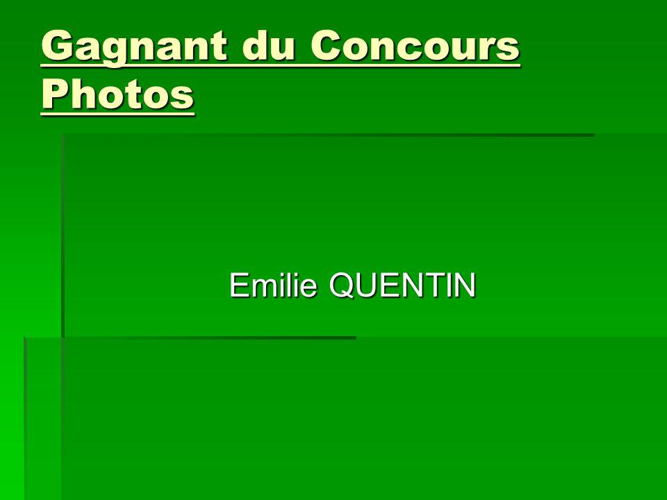 Gagnant du Concours Photos
