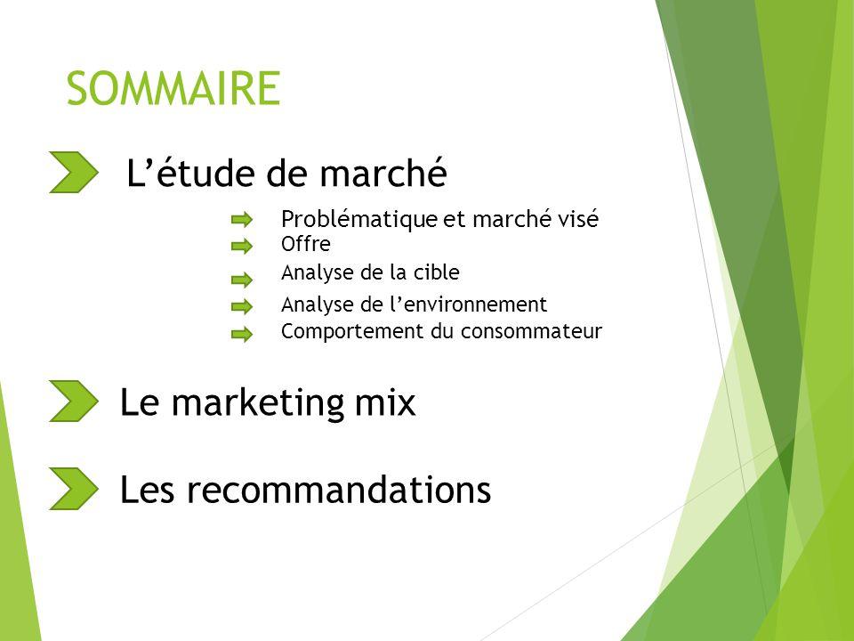 SOMMAIRE L'étude de marché Le marketing mix Les recommandations