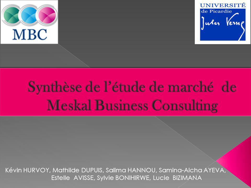 Synthèse de l'étude de marché de Meskal Business Consulting