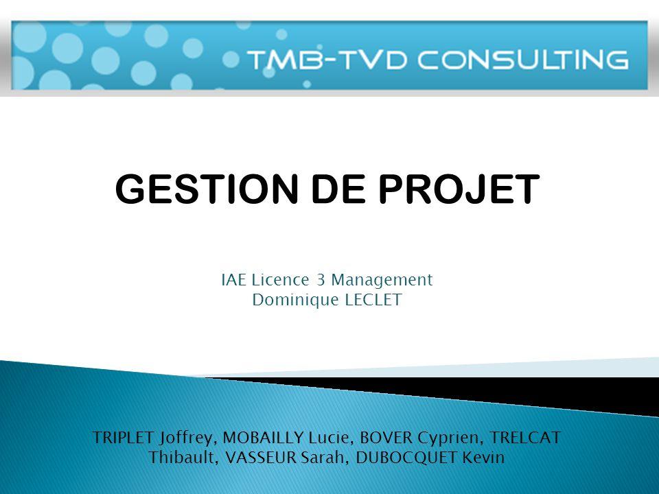IAE Licence 3 Management