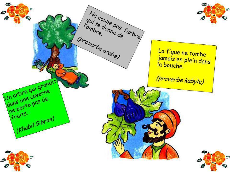 Ne coupe pas l'arbre qui te donne de. l'ombre. (proverbe arabe) La figue ne tombe. jamais en plein dans.