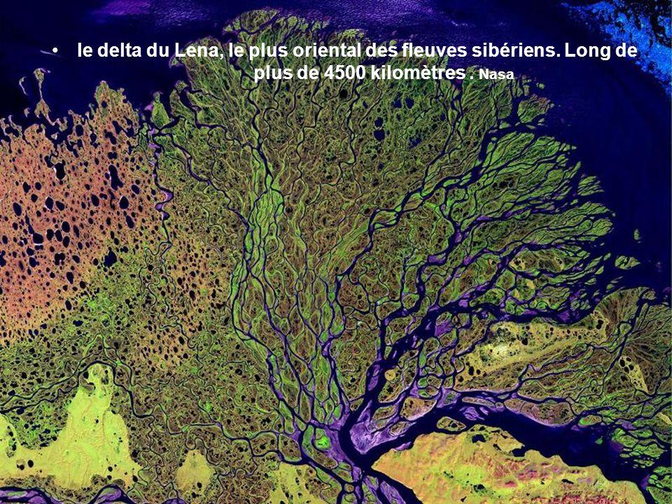 le delta du Lena, le plus oriental des fleuves sibériens. Long de