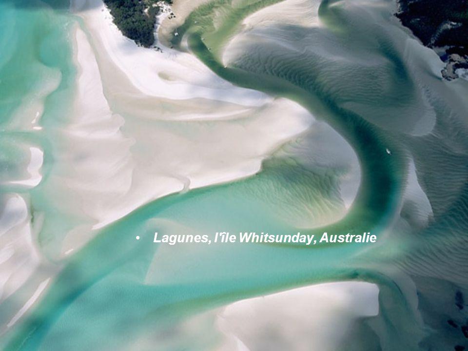 Lagunes, l île Whitsunday, Australie