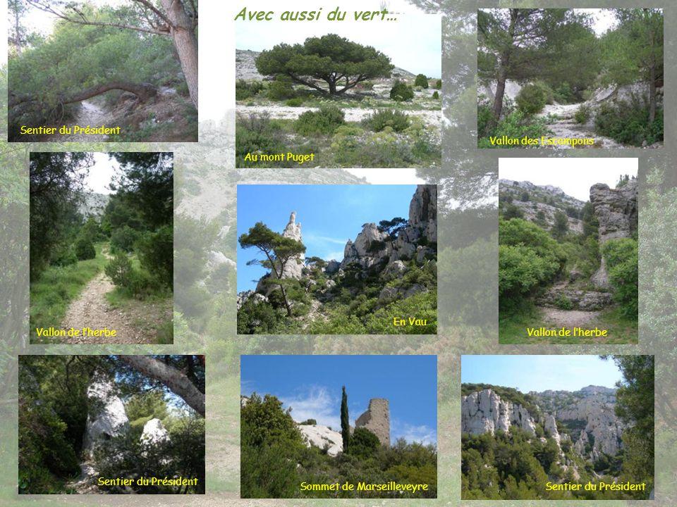 Avec aussi du vert… Sentier du Président Vallon des Escampons