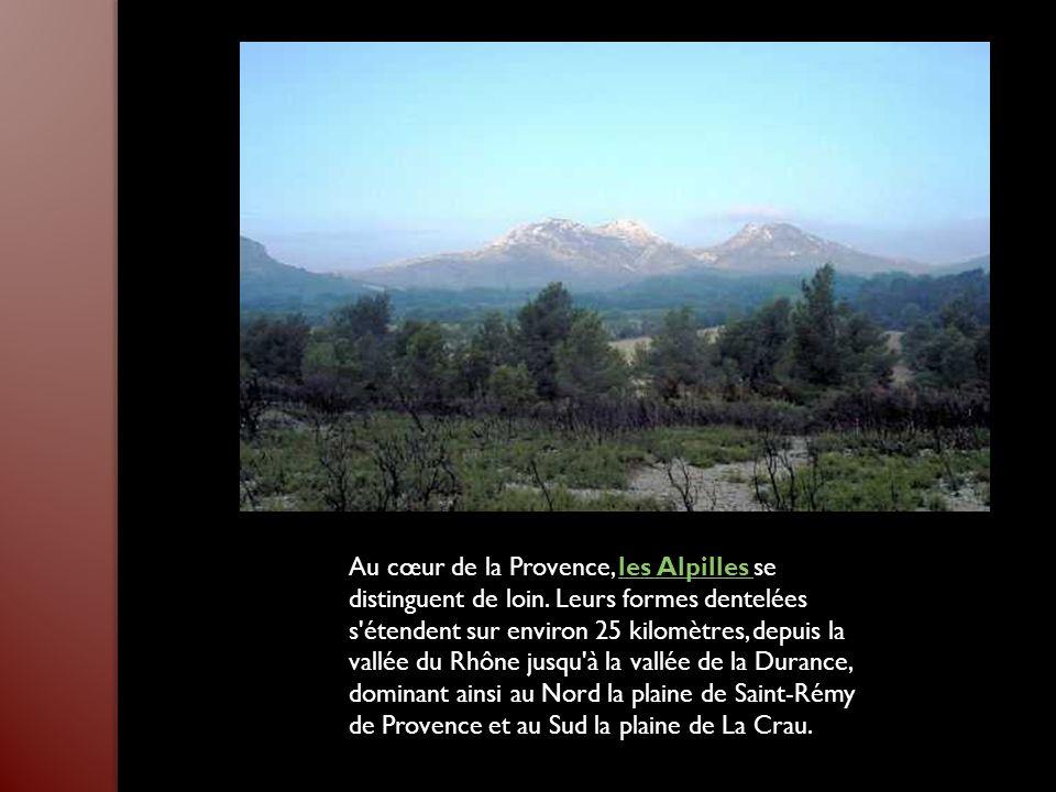 Au cœur de la Provence, les Alpilles se distinguent de loin