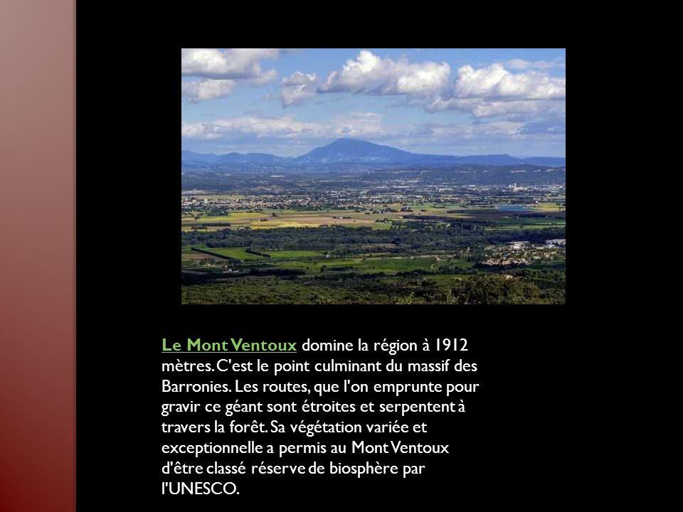 Le Mont Ventoux domine la région à 1912 mètres
