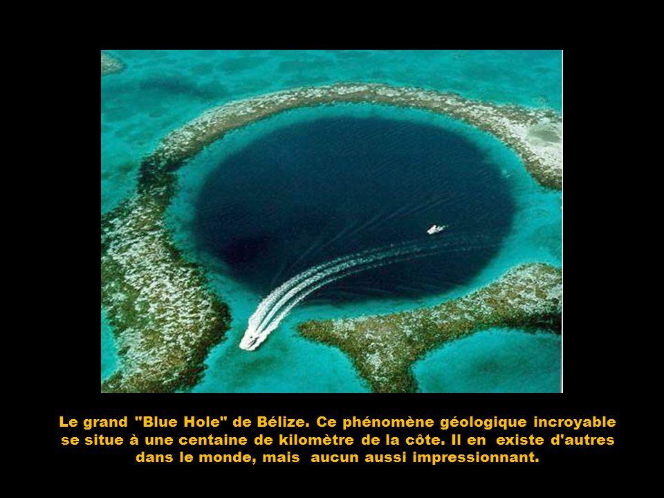 Le grand Blue Hole de Bélize