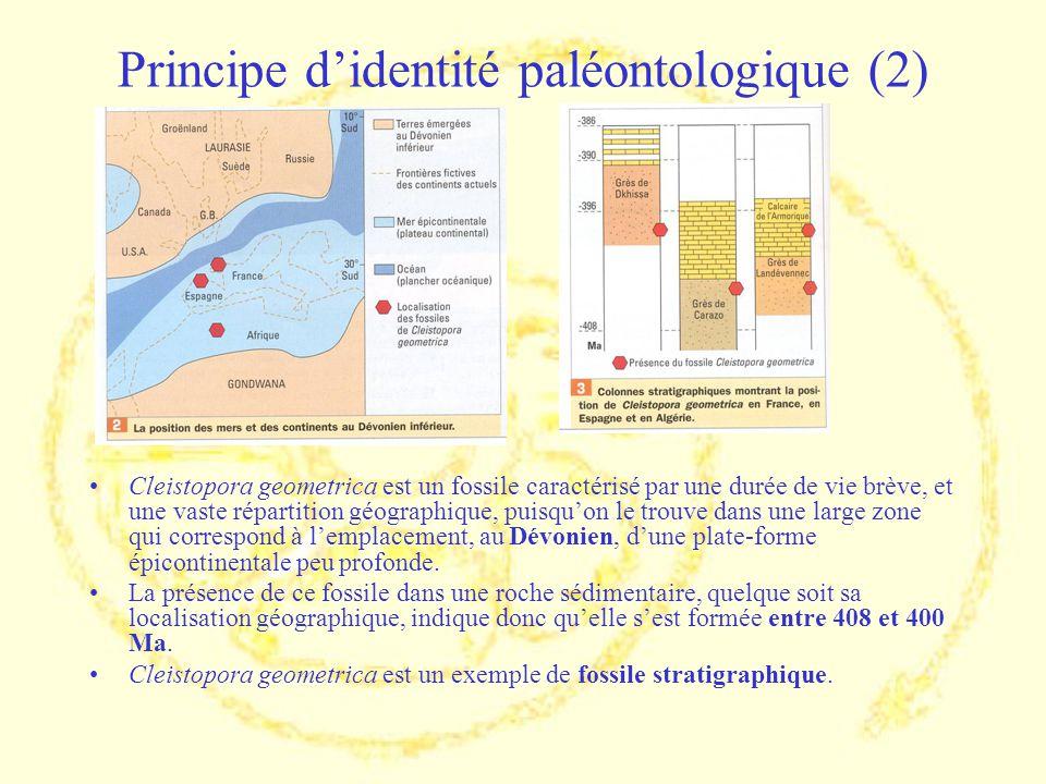 Principe d'identité paléontologique (2)