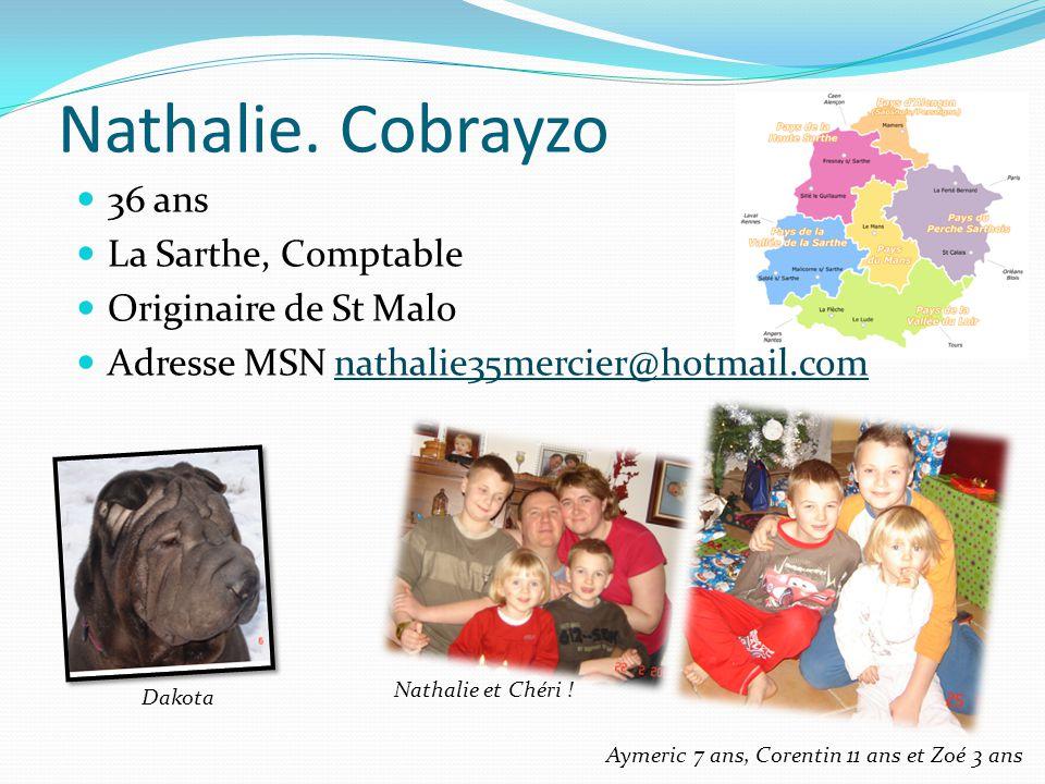 Nathalie. Cobrayzo 36 ans La Sarthe, Comptable Originaire de St Malo