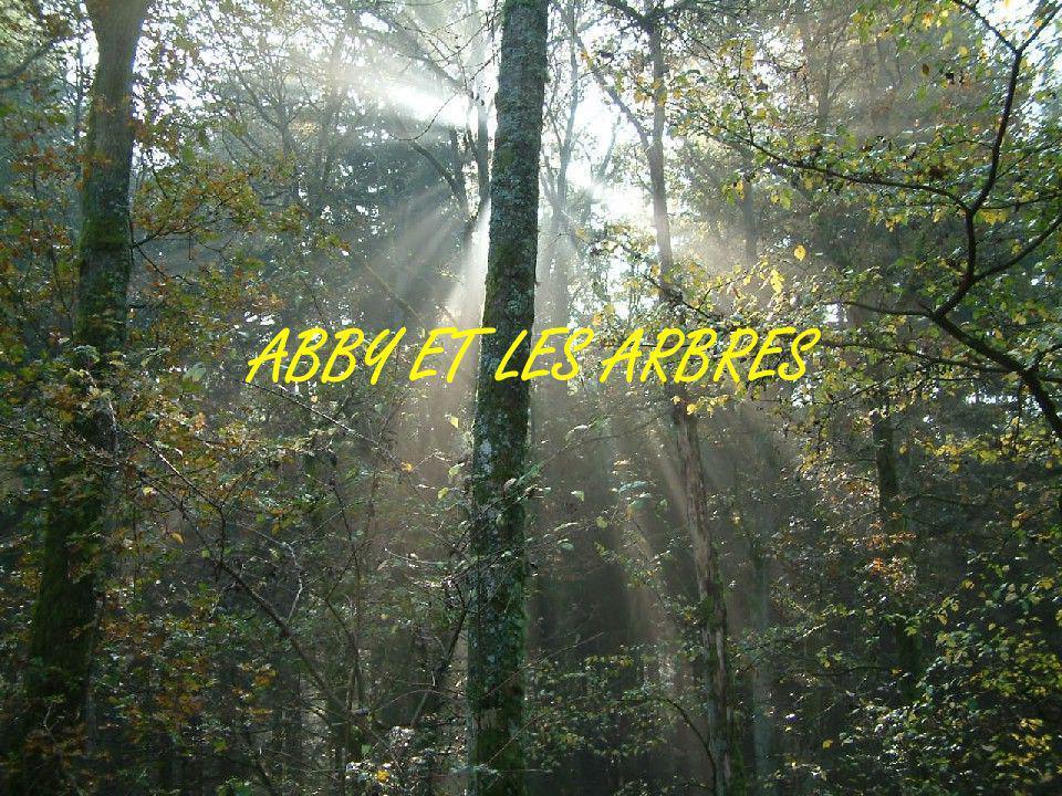 ABBY ET LES ARBRES