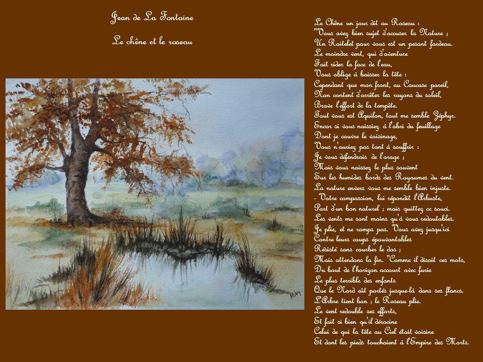 Jean de La Fontaine Le chêne et le roseau