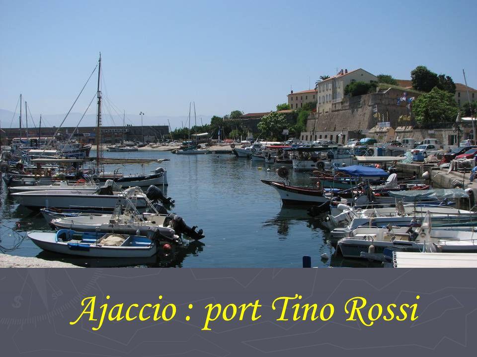Ajaccio : port Tino Rossi