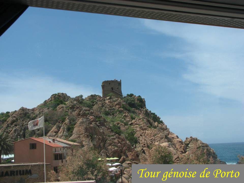 Tour génoise de Porto