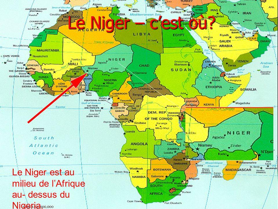 Le Niger – c'est où Le Niger est au milieu de l'Afrique au- dessus du Nigeria.