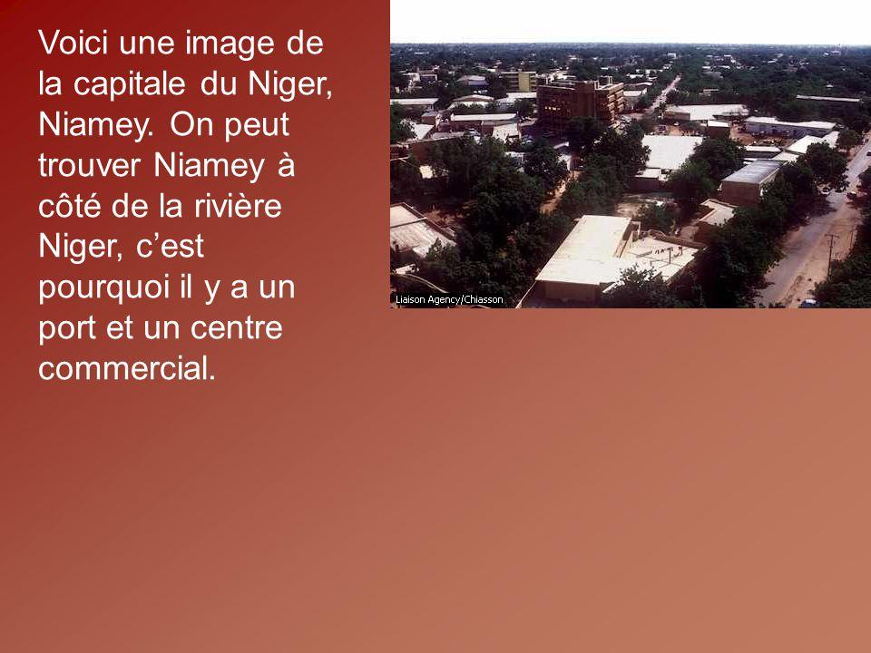 Voici une image de la capitale du Niger, Niamey
