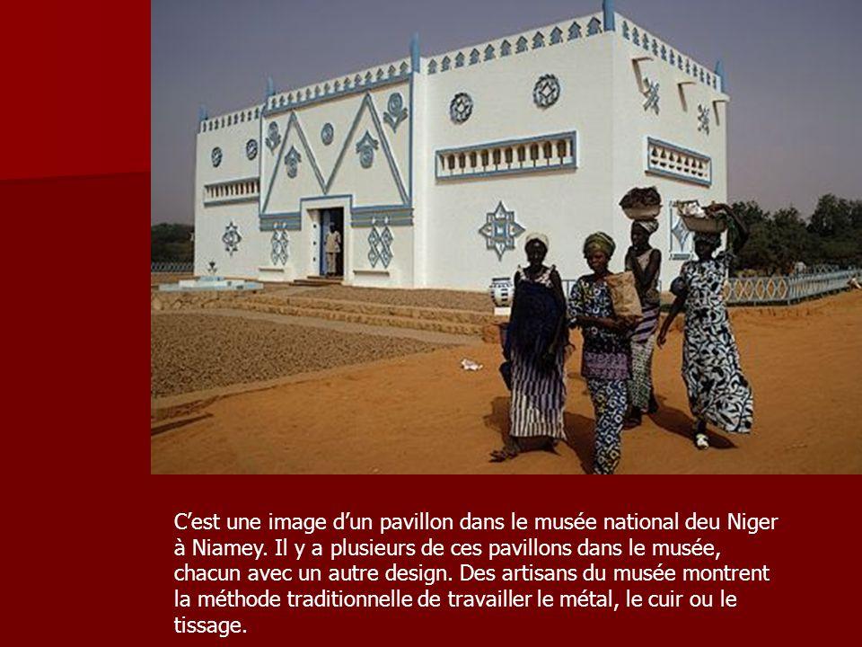 C'est une image d'un pavillon dans le musée national deu Niger à Niamey.