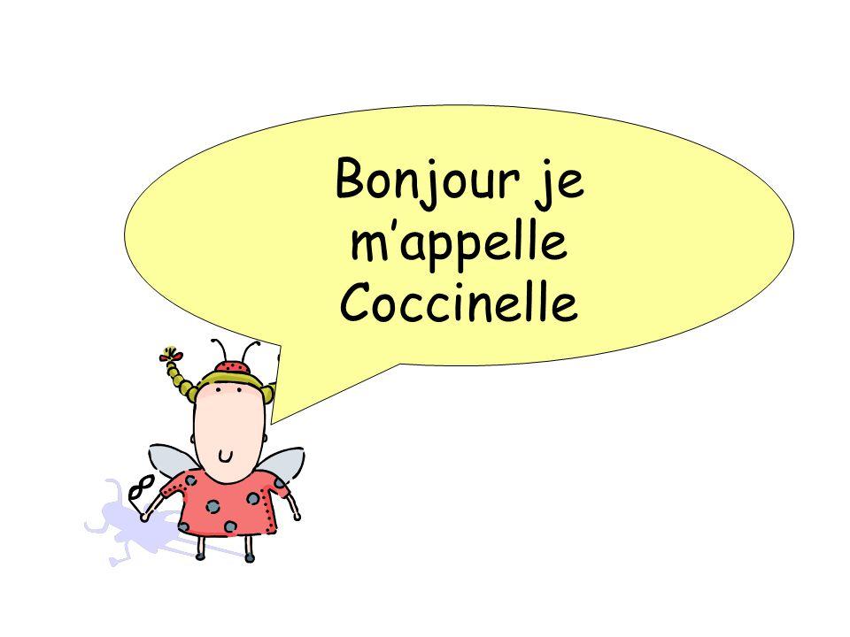 Bonjour je m'appelle Coccinelle